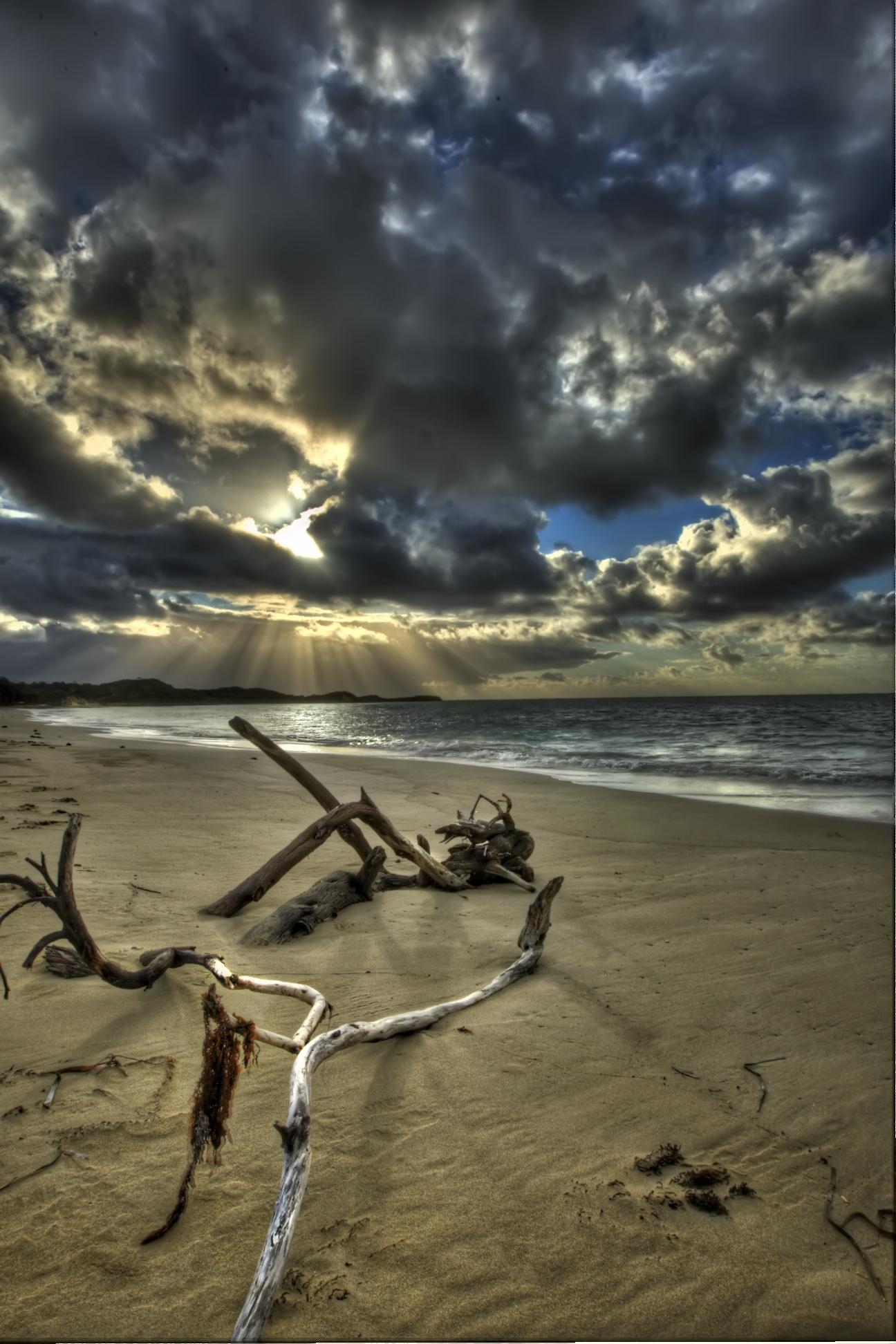 wood on beach copy
